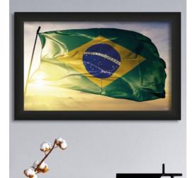 Quadro Decorativo Plasbil Médio Bandeira do Brasil QDM057