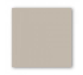 Porcelanato Delta Retificado Avorio Polido 62x62Cm Bege